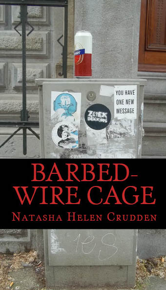 barbed-wire-cage-cover-2